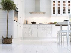 Fancy Scandinavian Kitchen with Full White Wall Paint Color also White Kitchen Cabinets along with White Table and Chairs and Indoor Plant Decorations