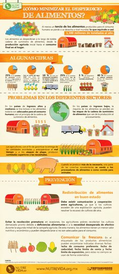 Infografía ¿Cómo minimizar el desperdicio de alimentos?