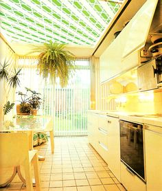 Plant life in an '80s kitchen
