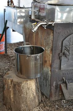 Tap your own tree at Ambler Farm to collect sap for your private reserve of maple syrup. This is winter farming at its best! Maple Syrup Tree, Maple Syrup Evaporator, Tapping Maple Trees, Sugar Bush, Tree Sale, Honey Syrup, Sugaring, Amish Recipes, Fruit Trees