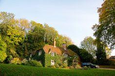Những ngôi nhà có cây leo kín tường đẹp và bình yên như trong truyện cổ tích