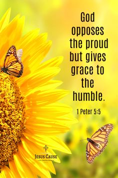 Have grace not pride for then god can move. Scripture Verses, Bible Verses Quotes, Bible Scriptures, Healing Scriptures, Healing Quotes, Biblical Quotes, Religious Quotes, Jesus Today, Inspirational Bible Quotes