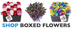 In the box of flowers there are different attractive flowers are kept in such manner so that it look beautiful. If you want to buy flower box then you contact Flower Delivery Philippines, which is reputed online florist. Send Roses, 12 Roses, Dozen Red Roses, Flower Delivery Service, Online Flower Delivery, Same Day Flower Delivery, Buy Flowers Online, Online Flower Shop, Ecuadorian Roses