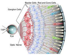 Eagle Eyes by UniScience Group                                                                                                                                                                                 Mais