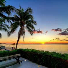 312 Best Sunscape Sabor Cozumel images in 2020 | Cozumel ... on Sunscape Outdoor Living id=62274