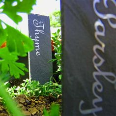 Herb names to cut from Vinyl and use to make your own Herb Name Stakes. Herb Markers, Plant Markers, Plant Labels, Flower Pots, Flowers, Parsley, Slate, To My Daughter, Give It To Me