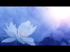 Antonio Vivaldi: Concerto for flautino, strings & b. in C major (RV Better Off Dead, New Age Music, C Major, Nature Sounds, Sound Healing, The A Team, Meditation Music, Relaxing Music, His Hands