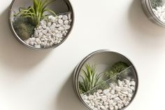 Repurposing tin cans - could also set stones in resin