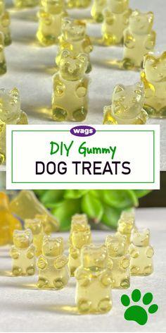 Puppy Treats, Diy Dog Treats, Gourmet Dog Treats, Homemade Dog Treats, Healthy Dog Treats, Easy Dog Treat Recipes, Dog Food Recipes, Dog Biscuit Recipes, Dog Bakery