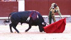 Madrid, corrida d'Adolfo. Quatre naturelles d'Escribano pour un triomphe