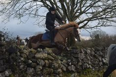 Sahara hunting with the North Galway Hunt January 2016. #loveirishhorses #horseforsale  Email coopershilllivery@gmail.com for more information