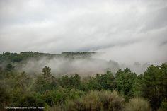 1000imagens.com / Paisagem Natural : ' Temática - Neblina e Nevoeiro 28', de Vitor Nunes.