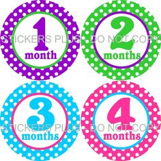Baby Month Stickers Baby Girl Monthly Stickers by StickersPlus, $8.99