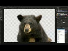 Vídeo Aula - Dupla Exposição no Photoshop - Parte 01 - YouTube