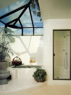 Bathroom with a skylight and indoor plants