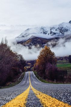 new zealand by 63257740.