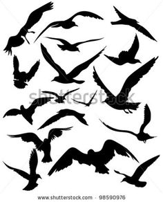 Flying Bird Silhouette | Set Of Seagulls Silhouettes - Black Flying Birds On White Stock Vector ...