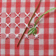 Gingham-Embroidery-Watermelon-19