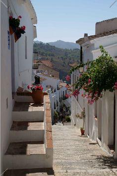 Málaga, Andalusia,  Spain