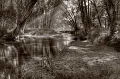 Sepia Stream - #landscapephotography #landscape #nature #dream #HDR #photography #photooftheday #sepia