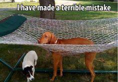 mistake !