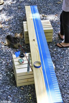 Ruler Growth  chart -like the idea of taping off and painting with chalk board paint