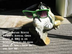 This Sunday is the Urban Safari Rescue Society Annual Open House & BBQ!