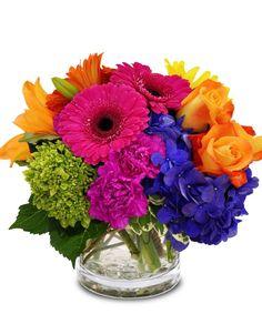 Color Therapy Flower Designs - City Line Florist Bright Flowers, Beautiful Flowers, Bright Colors, Bright Wedding Flowers, Rainbow Flowers, Mexican Flowers, Green Hydrangea, Flower Centerpieces, Mexican Wedding Centerpieces
