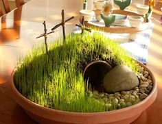Grow this to show kids the tomb is empty and Jesus has risen . Could also talk about spring and all things new , like grass , eggs and the symbolism . Tech kids how to grow grass or wheatgrass then put in a shake and drink it . I could go on ....tb