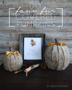 DIY Faux Fur Covered Pumpkins - brepurposed