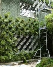 Thumb ca green nursery torrance