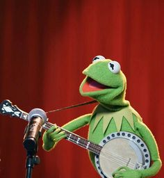 37 Kermit The Frog Memes Funny Ideas Puppet Training, Muppet Show, Best Memes, Funny Memes, Frog Illustration, The Kooks, Fraggle Rock, It's Going Down, Kermit The Frog