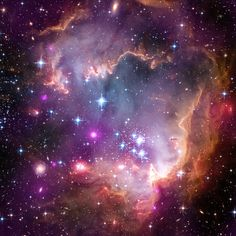 NGC 602 is a cluster of young stars in the Small Magellanic Cloud (SMC), one of the closest galaxies to our Milky Way. The Hubble image is shown in red, green and blue with Chandra information colored purple and Spitzer colored red.