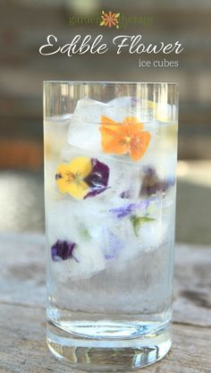 Edible Flower Ice Cubes made perfectly through two steps