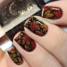 Fall Nail Designs - My Cool Nail Designs Fall Manicure, Manicure Y Pedicure, Thanksgiving Nail Art, Christmas Nail Art, Holiday Nails, Holiday Nail Designs, Cute Nail Designs, Autumn Nails, Fall Nail Art