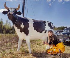 Huisia vappua! 😁🐂 #kasvihuoneilmiö #vappu #trade #tradenomiliitto #tradenomi #mediatuotanto #turuntaideakatemia #turkuamk #opiskelijaelämää #excellenceinaction #trolry #ekvk Anton, Cow, Animals, Instagram, Animales, Animaux, Cattle, Animal, Animais