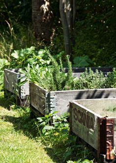 Gør mindre, nyd mere, og lad naturen vise vejen til en smuk, levende og bæredygtig have. En grøn have er god for både miljø, dyreliv og dig selv. Prøv vores 12 nemme tips.