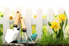 Украшайте сад вместе с нами!  Представьте, тихий летний вечер, вы сидите на веранде собственного загородного дома или дачи, в мангале шипит капающий с шашлыка маринад. Птицы сидят на деревьях и сладко щебечут. http://opt.expert/articles/ukrashajte_sad_vmeste_s_nami  #optexpert #оптэксперт #вебмаркет #всепродается и #всепокупается