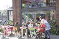 De Taart Van M'n Tante - Amsterdam
