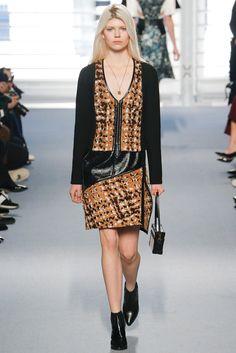 Louis Vuitton Fall 2014 Ready-to-Wear Fashion Show - Ola Rudnicka (Next)