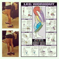 Some leg workouts