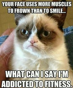 Grumpy Cat meme ...For more hilarious humor and funny jokes visit www.bestfunnyjokes4u.com/rofl-funny-pic-of-the-day-8/