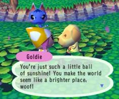 Image about cute in 𝖒𝖊𝖒𝖊𝖘 𝖋𝖔𝖗 𝖉𝖆𝖞𝖘 ⛓ by 𝕶𝖆𝖞𝖑𝖊𝖊 ⛓ Animal Crossing Funny, Cute Memes, Funny Memes, My Escape, Wholesome Memes, Reaction Pictures, My Animal, My Sunshine, In This World