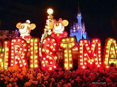 disneyland christmas lights   Tokyo Disneyland Christmas lights   Disney Fun Spot