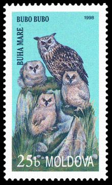 Buy and sell stamps from Moldova. Meet other stamp collectors interested in Moldova stamps. Old Stamps, Vintage Stamps, Eurasian Eagle Owl, Gravure Illustration, Commemorative Stamps, Stamp Catalogue, Paper Owls, Postage Stamp Art, West Art