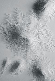 Rogan Brown | Bacteria Deleria, 2014 | handcut paper