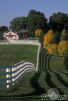 love the white fencing shadow and the land!