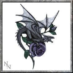 Dragon Beauty Wall Plaque - Anne Stokes???
