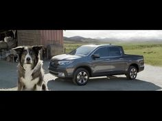 Honda Is Not Sheepish About Using Super Bowl Ad To Launch New Ridgeline