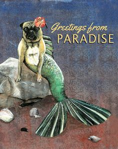 Hey, I found this really awesome Etsy listing at https://www.etsy.com/listing/198084861/mer-pug-greetings-from-paradise-postcard